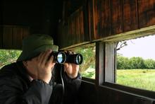 Man Looking Through Binoculars...