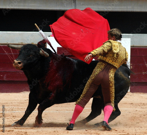 Wall Murals Bullfighting corridas