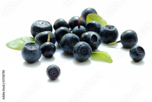 bilberry close up Fototapeta