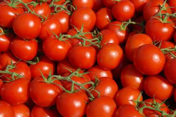 Tomaten in Le Lavandou