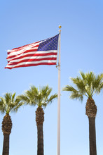 US Flag Flying Amid Three Palm...