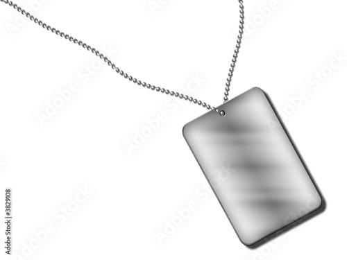 Billede på lærred silver pedant on white background