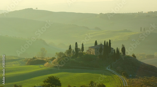 Door stickers Olive tuscan landscape