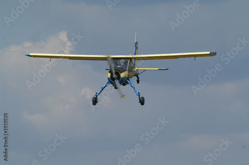Wilga - Buy this stock photo and explore similar images at