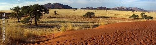 Paysage du Désert du Namib - Saison sèche