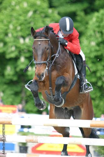 Poster Paardrijden Reitsport Springen