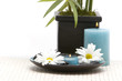canvas print picture Massage stones, candle and daisies