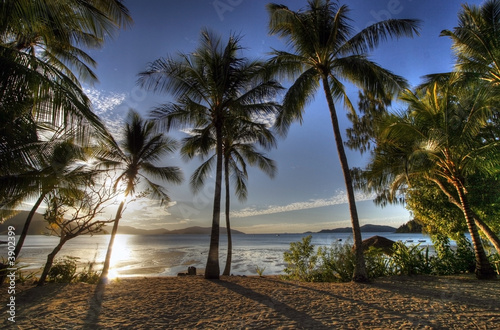 Photo sur Toile Plage tropical island