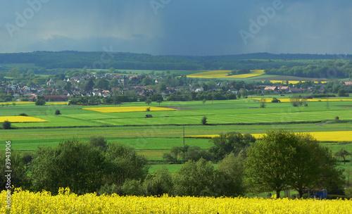 Fotobehang Rijstvelden Landschaft
