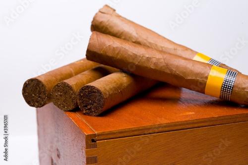 Fotografía Cigars