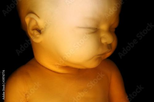 Fényképezés  Fetus on Black