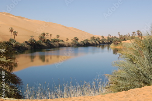 Fotografija Oasis, Sahara Desert