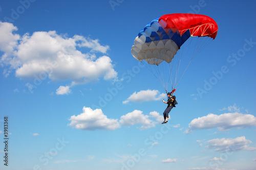 Stampa su Tela parachuter