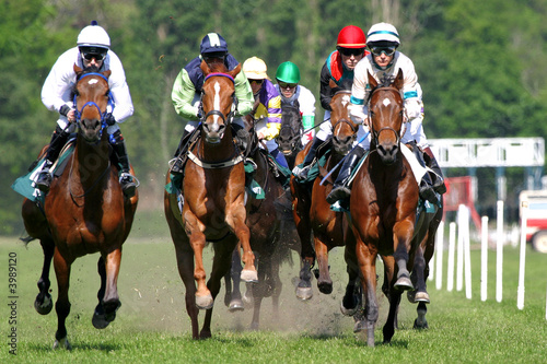 Canvas Print horse racing