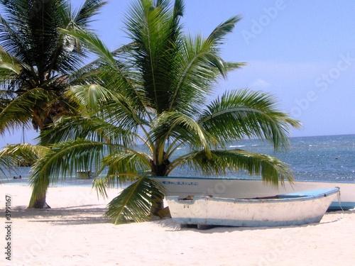 Foto-Leinwand - Palmen am Strand mit Fischerboot -  Karibik