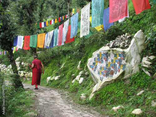inde - dharamsala - pierre mani Fototapet