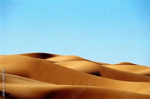 Poster de jardin Desert de sable Desert dunes
