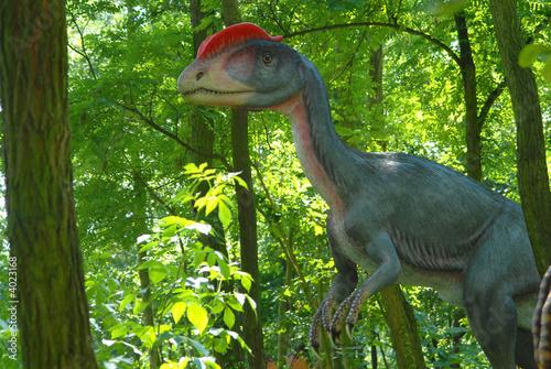 Fotografie, Tablou  Dilophosaurus wetherilli, Dilophosaur