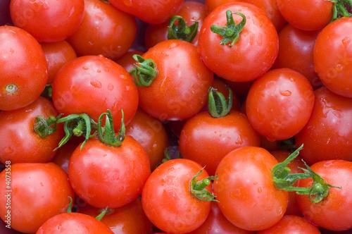 Fotografie, Obraz  Tomatoes