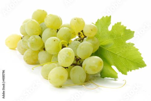Foto  grappolo d'uva