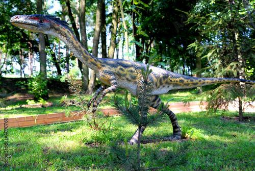 Fotografie, Tablou  Coelophysis bauri, Coelophys,  dinosaurs series