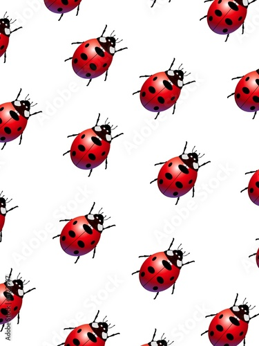 La pose en embrasure Coccinelles Ladybirds