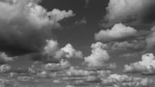 Black & White Sky
