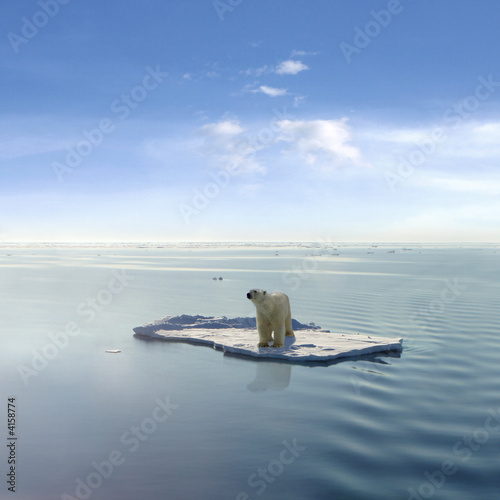 Deurstickers Ijsbeer The last Polar Bear