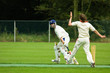 canvas print picture - cricket players