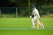 canvas print picture - man playing cricket