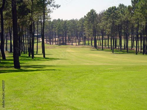 Deurstickers Golf Campo de golf
