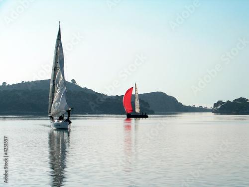 Staande foto Zeilen sailing on calm