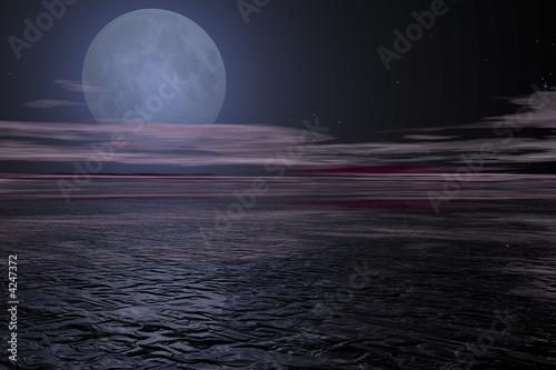 Fototapeta paysage de nuit obraz na płótnie