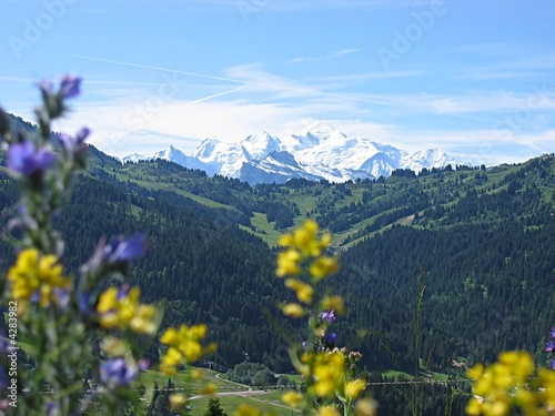 Fotografie, Tablou  Mont Blanc