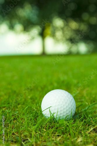Fotografija golf ball on green fairway