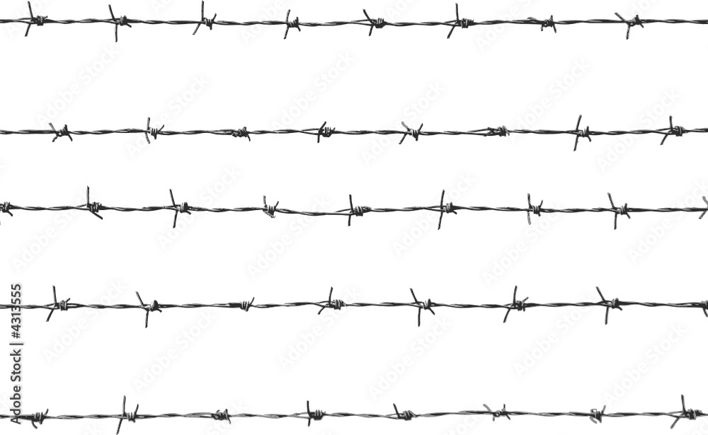 Fototapeta five pieces of barbed wire