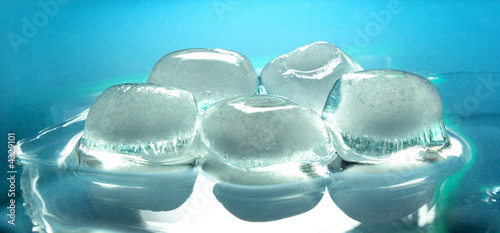 Poster Waterlelies Melting ice cubes