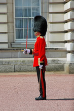 Queen Soldier