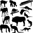 Some vector silhouettes of different animals