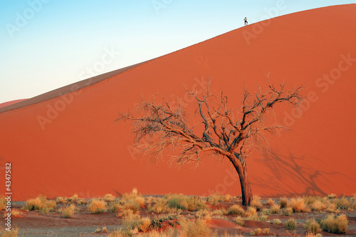 Woman silhouette on top of the red desert dune whit dead tree