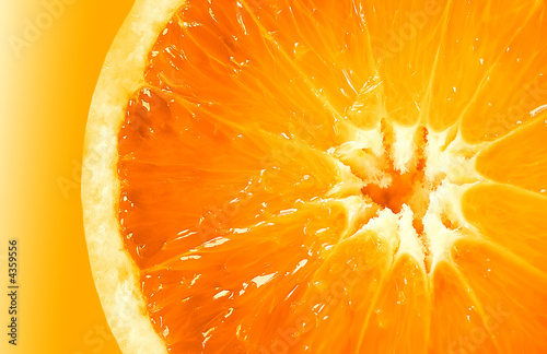 Aluminium Prints Slices of fruit O1