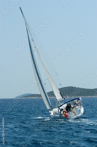 Garden Poster Sailing in Croatia