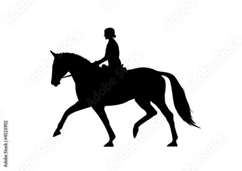 Fotoposter Paardrijden Dressurreiter