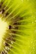 macro view of a fresh kiwi texture