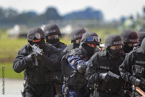 Cuadros en Lienzo SWAT commando