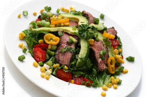 Steak Salad Canvas Print