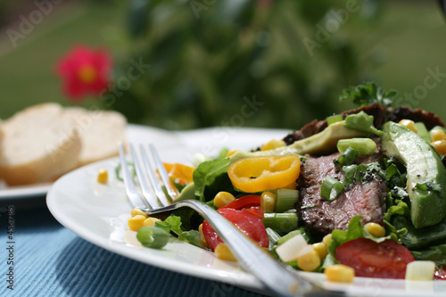 Beef Salad Canvas Print