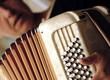 accordéon et son accordéoniste