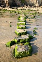 Stepping Stones Across A Stream.