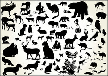 Lots Of Animals Vectors With S...